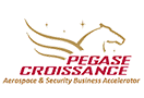 Pegase Croissance supports Welco